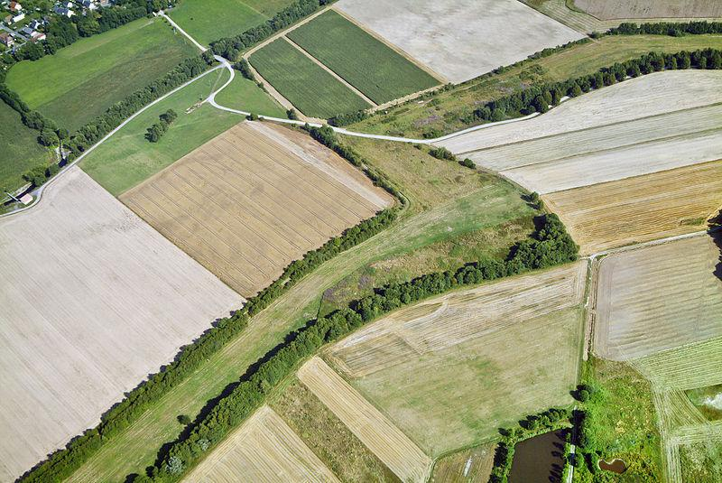 Nature Unites: Peace and Conservation in the Former Death Zone – the European Green Belt