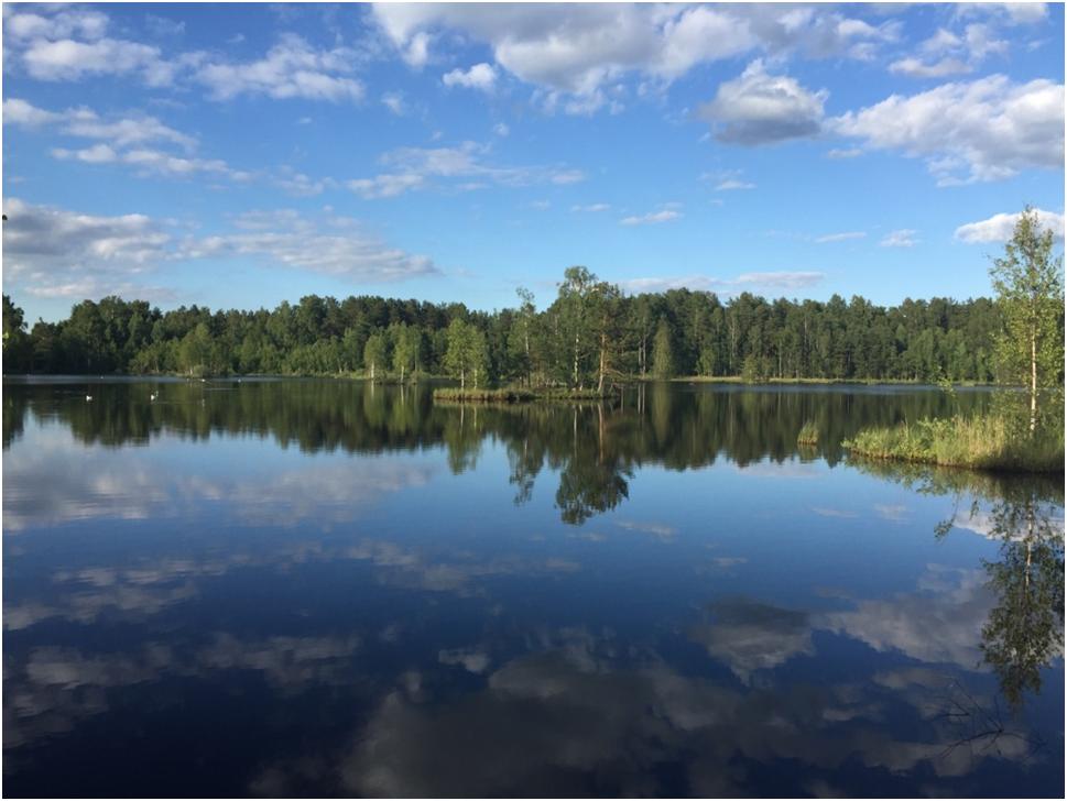 Lake. Copyright Katja Bruisch, 2019.