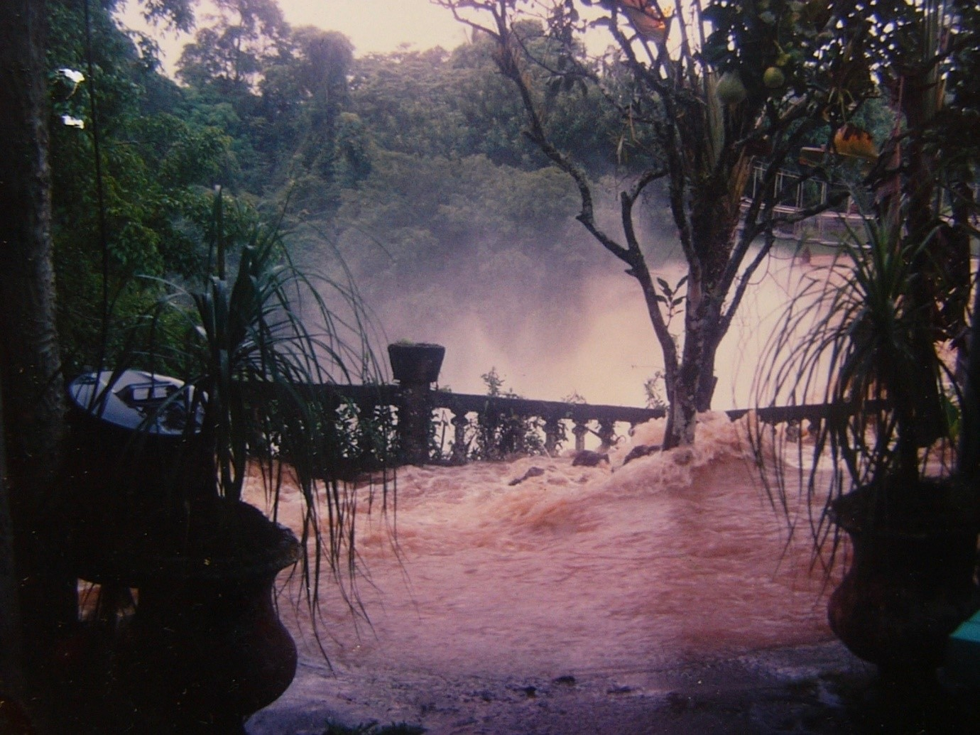 Photograph of yet another flood at Paronella Park. © Paronella Park Photograph Collection.