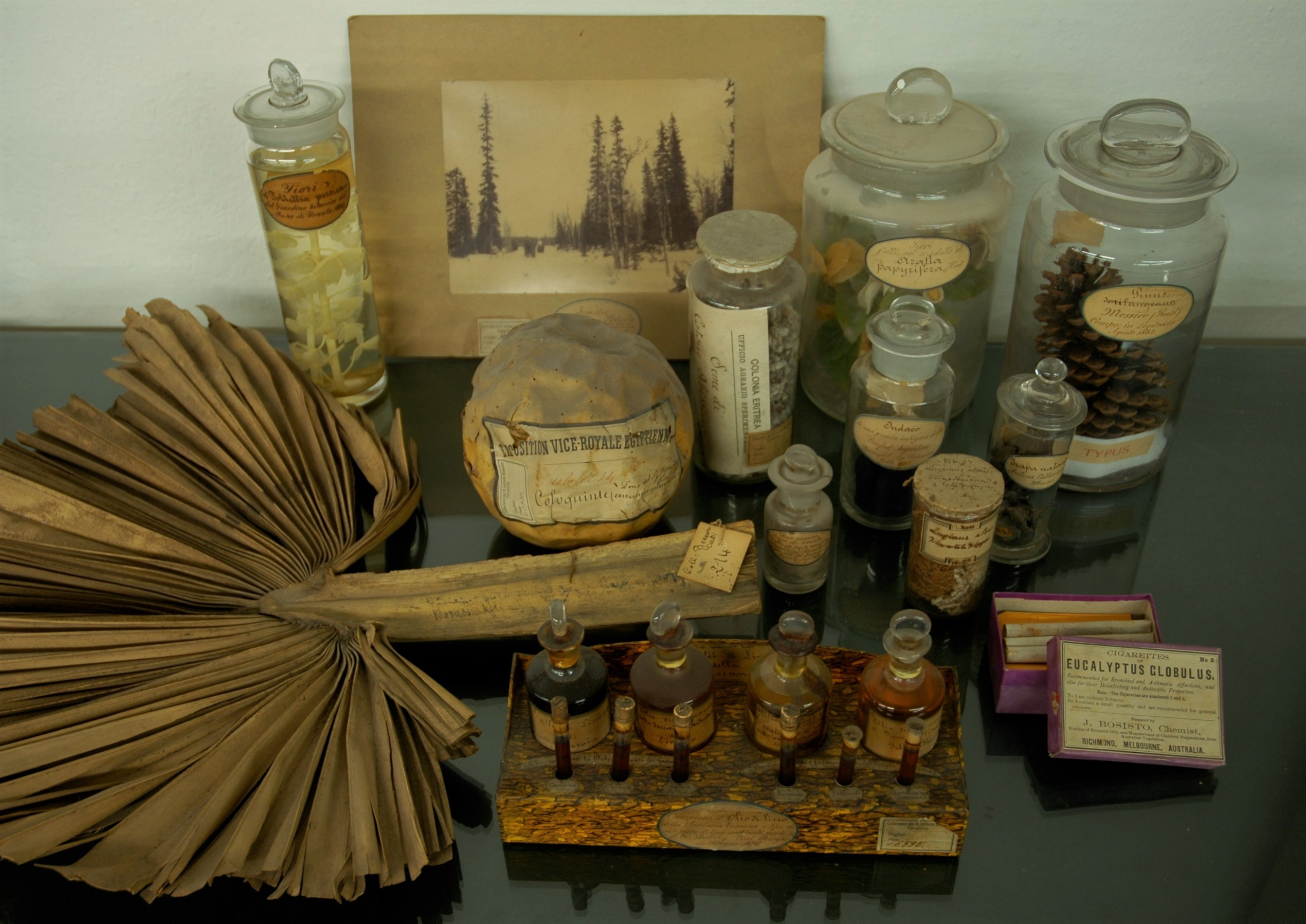 Display of museum objects.